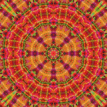 Fresh Orange Circle Mandala Pattern by ARTDICTIVE