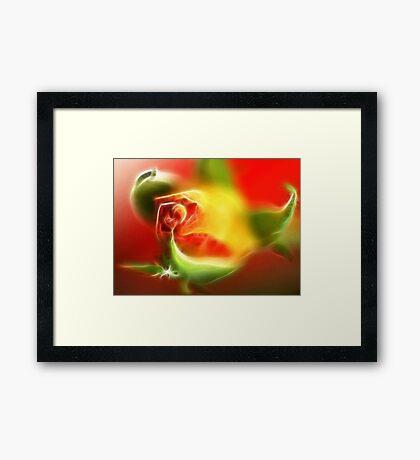 Rose bud - fractalious Framed Print