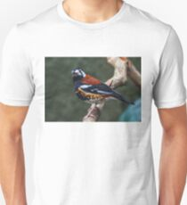 Chestnut-backed Thrush Unisex T-Shirt