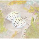 Oystercatcher nest by pokegirl93