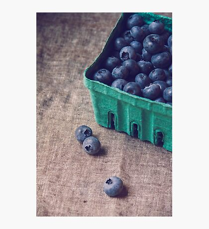 Summer Blueberries no. 2 Photographic Print