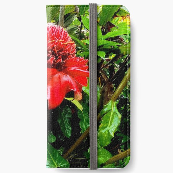 Red Torch Ginger Flower iPhone Wallet