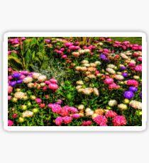 Chrysanthemums Sticker