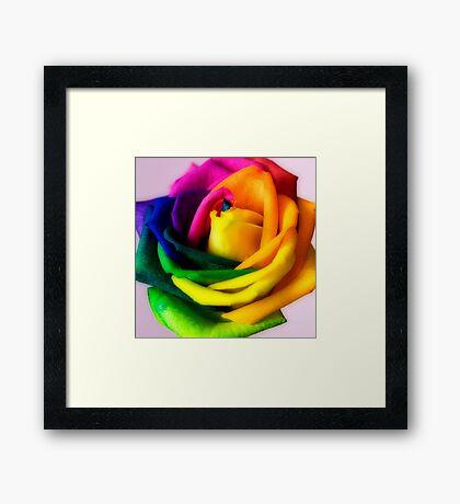 Hybridic Rose #2 Framed Print