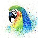 Watercolor Parrot by Abbie Macmillan