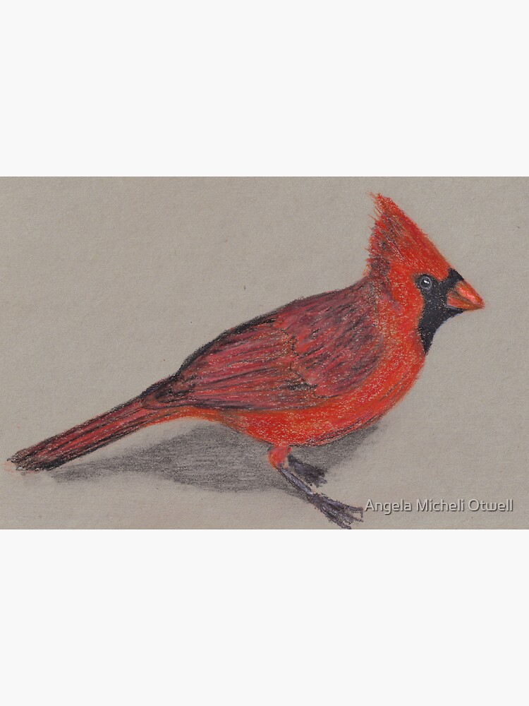 Cardinal by ByFitsAndStarts