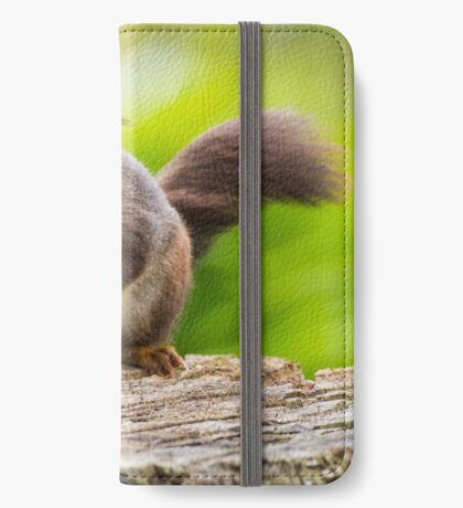 Windswept Red Squirrel iPhone Wallet