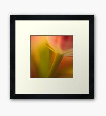 sensuous Framed Print