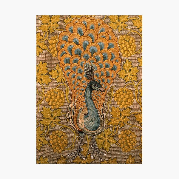 Peacock And Vine Detail, William Morris And Philip Webb Photographic Print