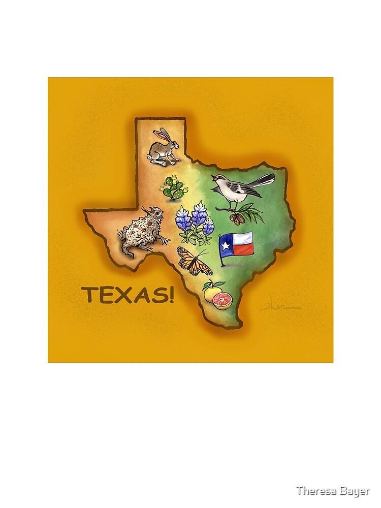 Texas Symbols by Theresa Taylor Bayer