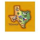 Texas Symbols by Theresa Taylor Bayer
