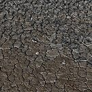Icy Desert by Adam Northam
