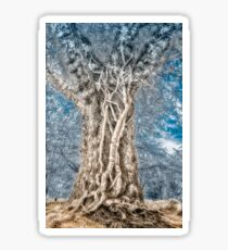 Infrared: Tree with Vines Sticker