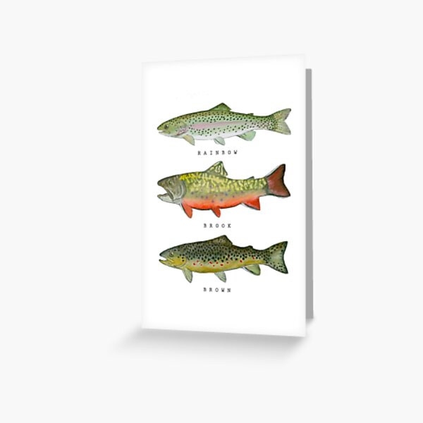 Trout Triad Greeting Card