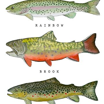 Trout Triad by CarsonSloas