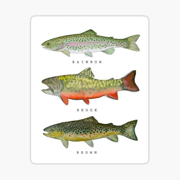 Trout Triad Sticker