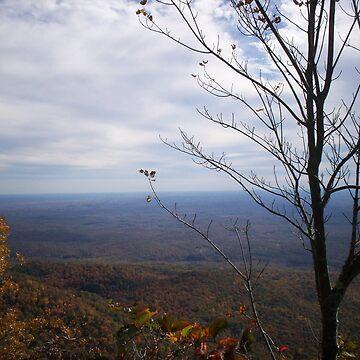 Autumn Overlook by ladychalk