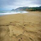 Montara Beach 2 by Ellen Cotton