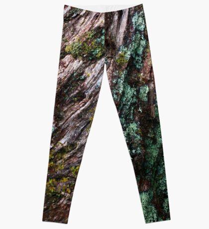 Nature's Patina Leggings