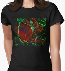 Synapses Womens Fitted T-Shirt