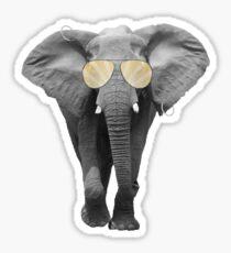 Sunny Elephant Sticker