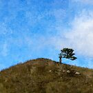 Over the Hill by Mel Brackstone