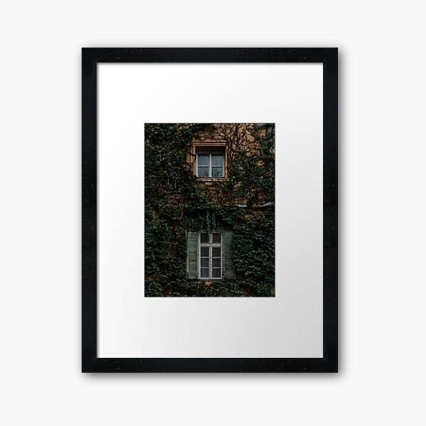 Windows With Green Creepers Framed Art Print
