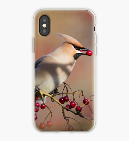 Waxwing with berry iPhone Case