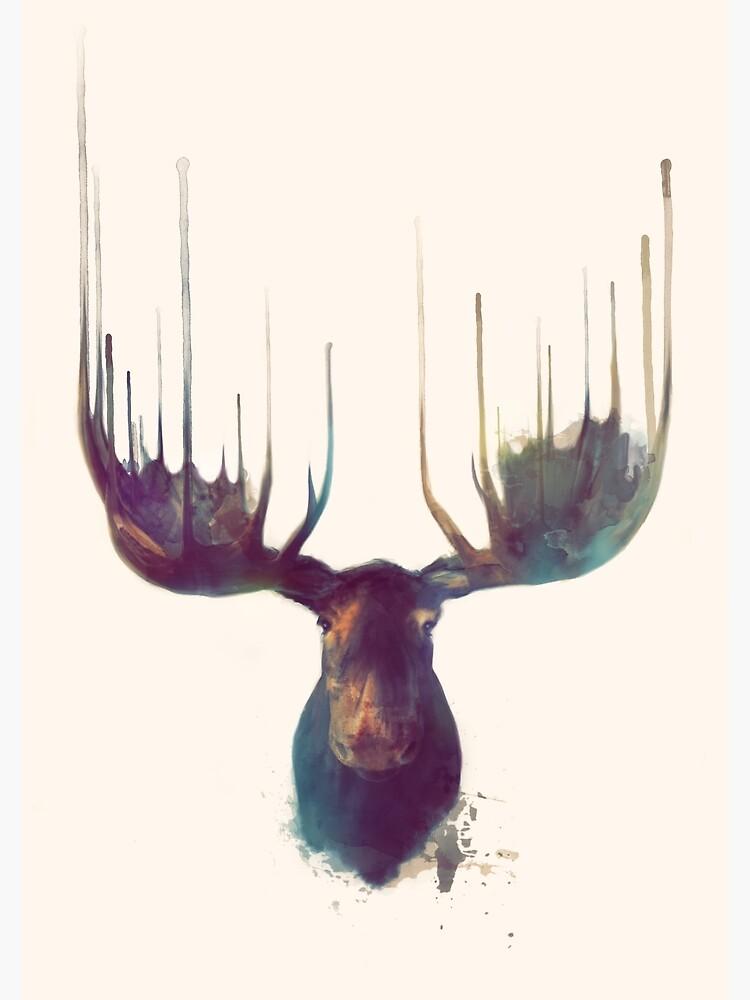 Moose by AmyHamilton