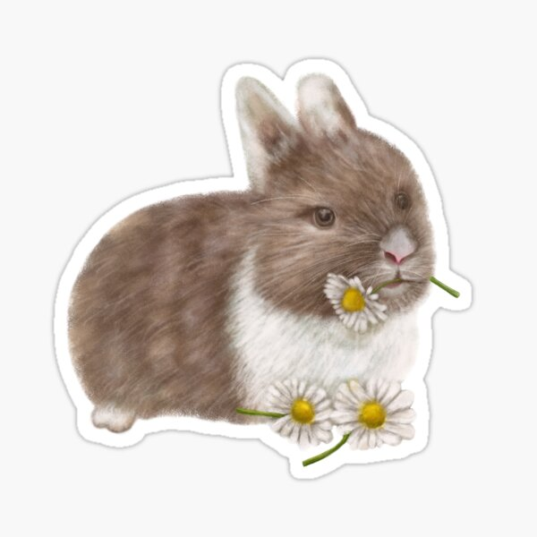 Brown Bunny with Daisies Sticker