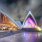 Symphony of LIghts by Sharon Kavanagh