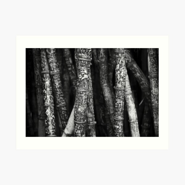 Black and White Graffitied Bamboo Art Print