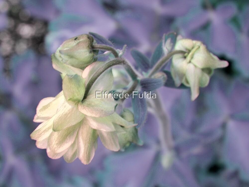 Pastel ! by Elfriede Fulda