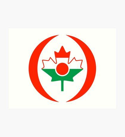 Niger Canadian Multinational Patriot Flag Series Art Print