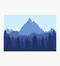 Winter Forest Photographic Print