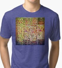 Cognitive Mapping  Tri-blend T-Shirt