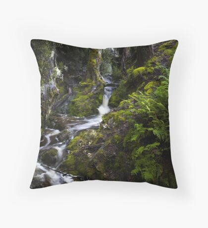 The silence of contemplation Throw Pillow