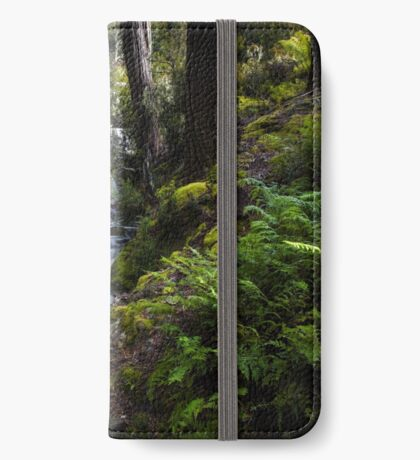 The silence of contemplation iPhone Wallet