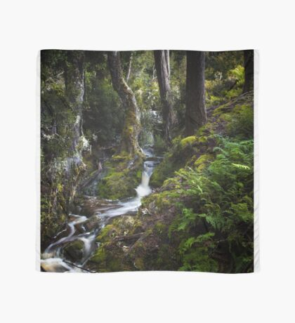 The silence of contemplation Scarf