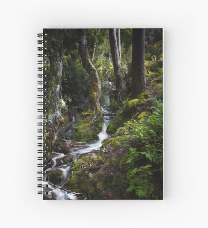 The silence of contemplation Spiral Notebook