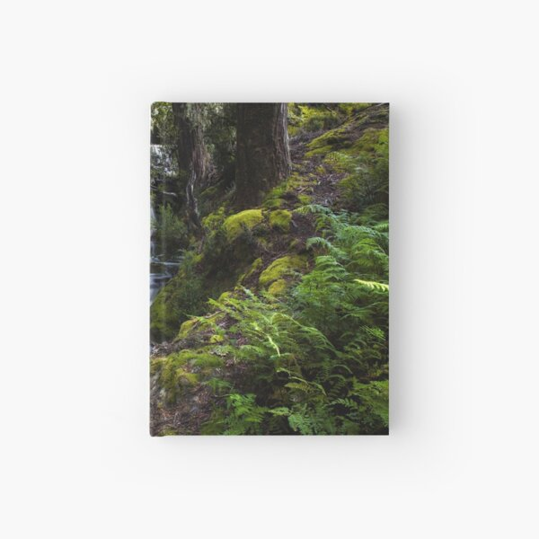 The silence of contemplation Hardcover Journal
