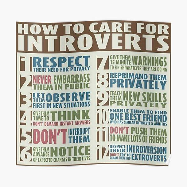 How To Care For Introverts  Poster