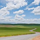 Road Winding Through the Palouse Wheatfields by Jeff Goulden