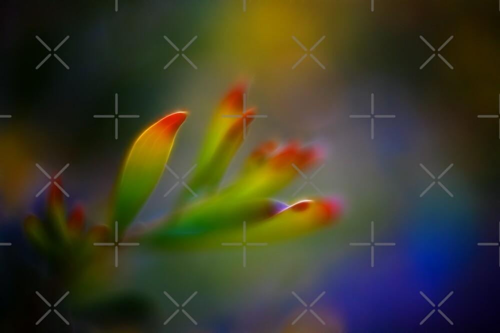 Sunlit leaves by Mel Brackstone