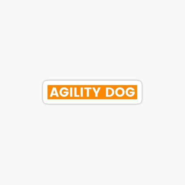 Agility Dog Sticker