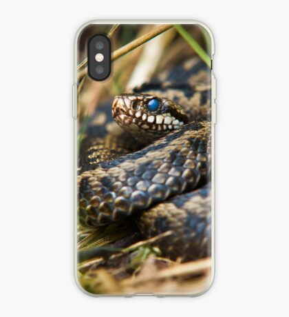 Snake in the Grass iPhone Case