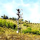 Pieve di Tho: railway signal with country landscape by Giuseppe Cocco