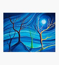 Trees in blue space  Photographic Print