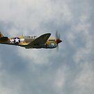 Curtiss P40F  Kittyhawk  Lees Hope by larry flewers