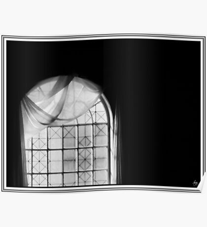 Arched Window Monochrome Poster